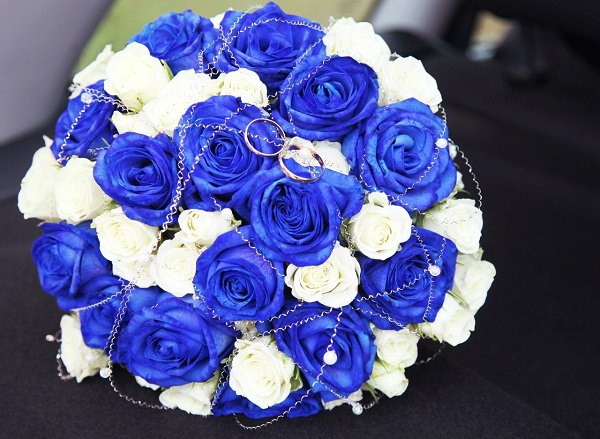 Hoa hồng xanh - tình yêu bất diệt