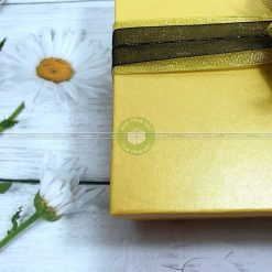 Hộp quà đẹp, hộp đựng quà cỡ lớn HQ11 – Kích thước 30x20x10